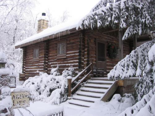 Cabin Life Guest House